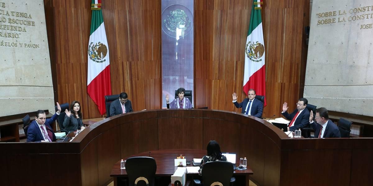 TEPJF pide subir multas a Zavala, Rodríguez y Ríos por simular apoyos