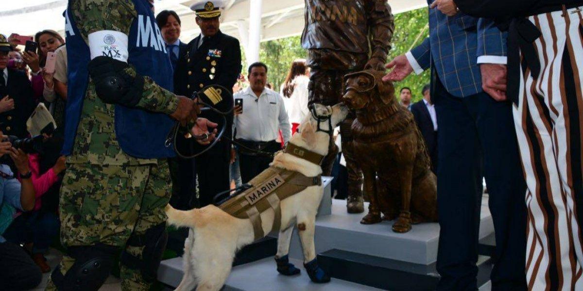 A 10 meses del 19-S, inauguran estatua de la perrita Frida en Puebla