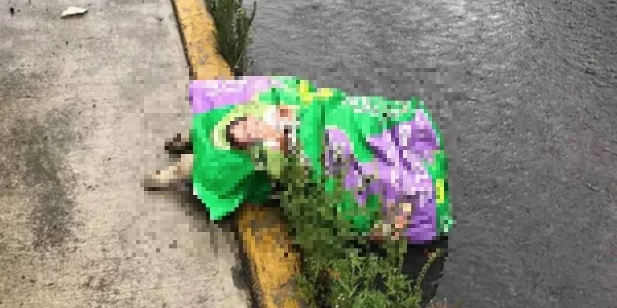 Descuartizan y abandonan a perros en el Estado de México