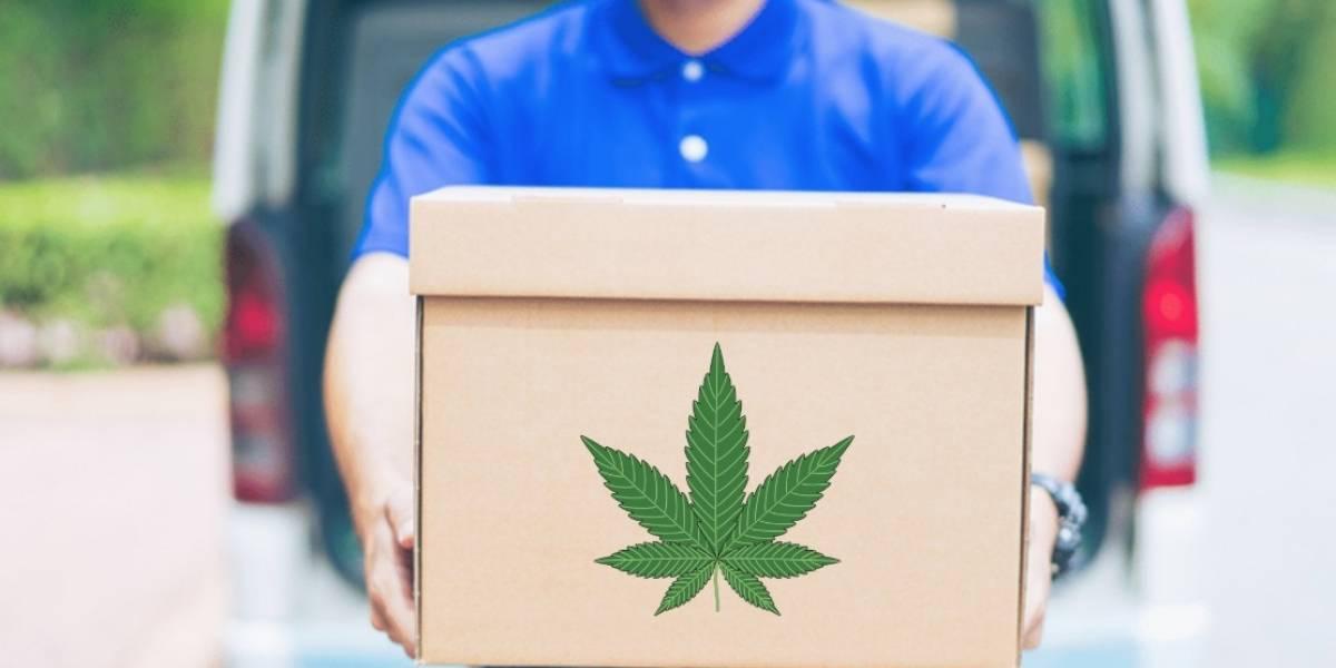 México: Ya venden marihuana a domicilio a través de aplicaciones
