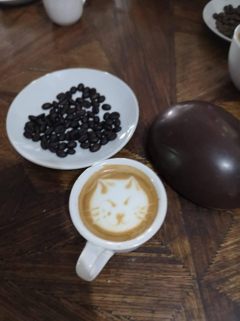Café Xalapa