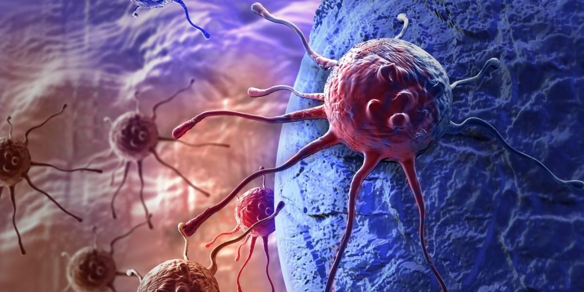 """Estudio asegura que pacientes con cáncer que deciden tratarse con """"medicina complementaria"""" tienen el doble de posibilidades de morir en un lapso de 7 años"""