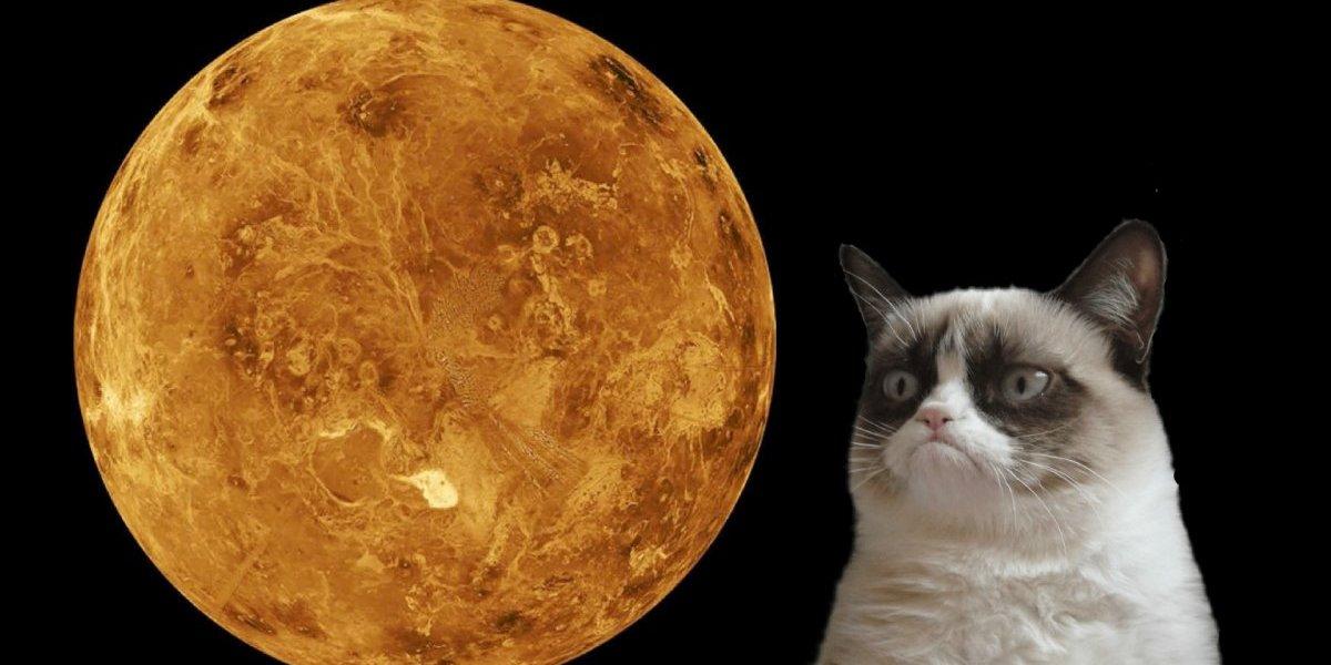 Os signos que serão atingidos pelos efeitos do Mercúrio retrógrado