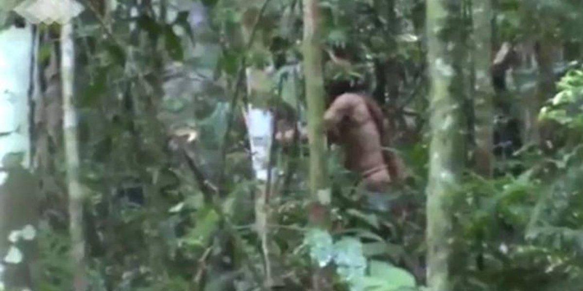 VÍDEO: Funai grava o último sobrevivente de uma tribo isolada na Amazônia