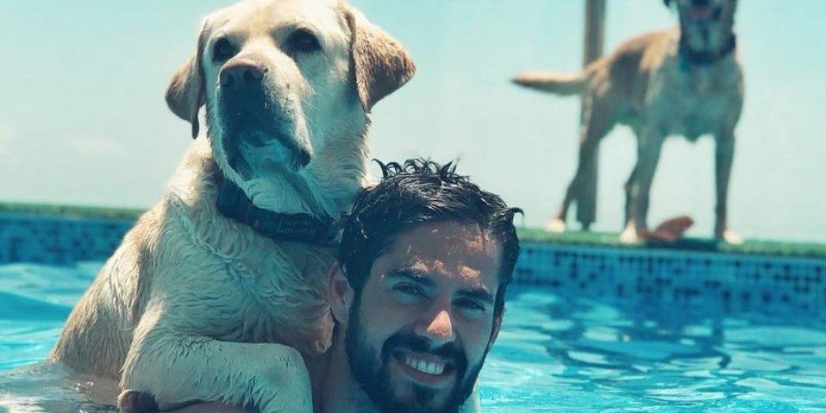 FOTOS: Conoce a los futbolistas que son amantes de los perros
