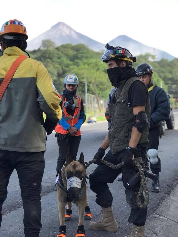 Foto: Facebook Antigua Al Rescate