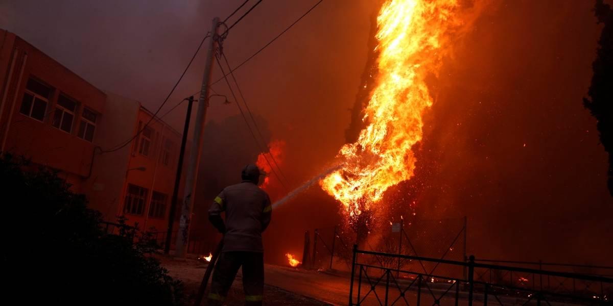 FOTOS: Incêndio florestal arrasa leste da Grécia e deixa mortos e feridos