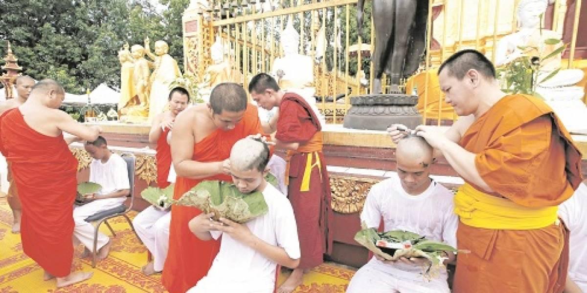 "De ""Jabalíes salvajes"" a once monjes budistas"