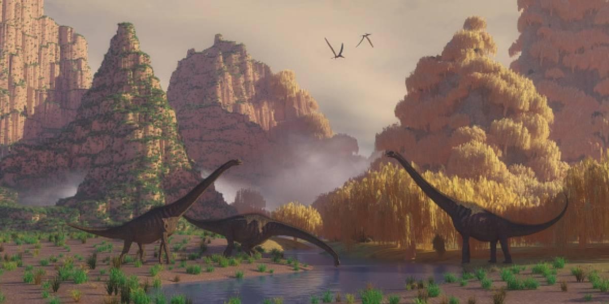 """""""¡Qué patudo!"""": encuentran el pie de  dinosaurio más grande del mundo"""
