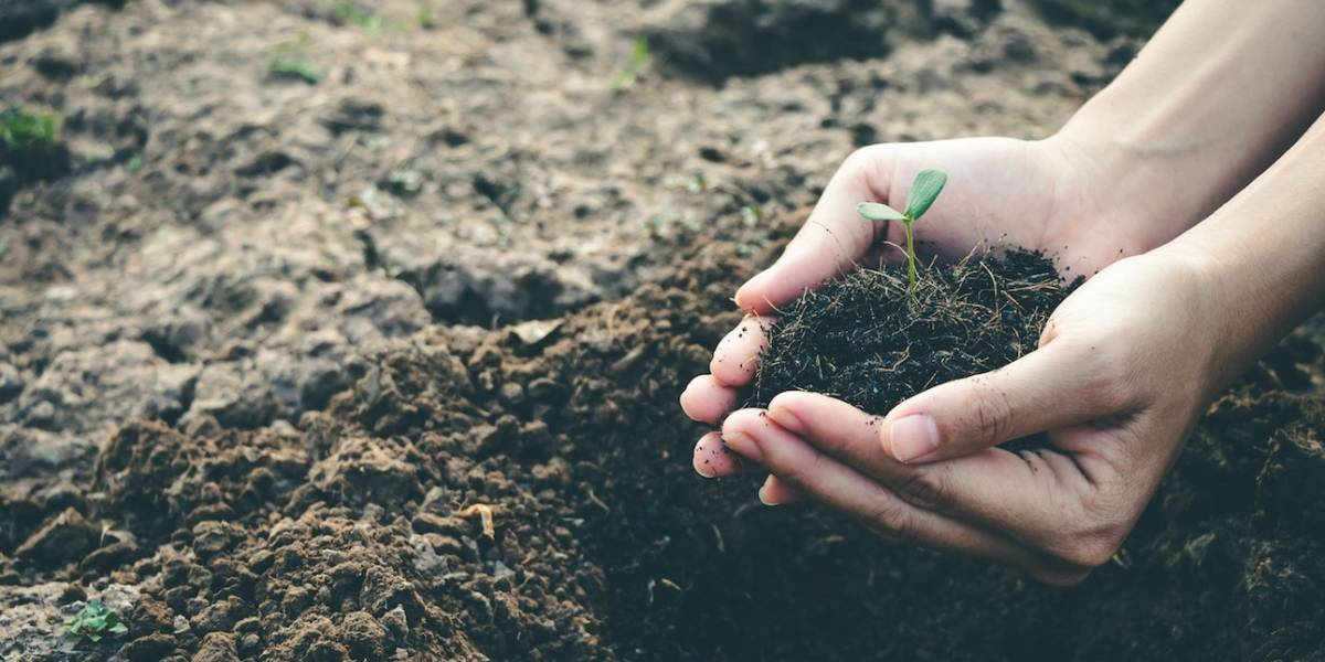 Haga parte de la nueva generación de colombianos comprometidos con el medio ambiente