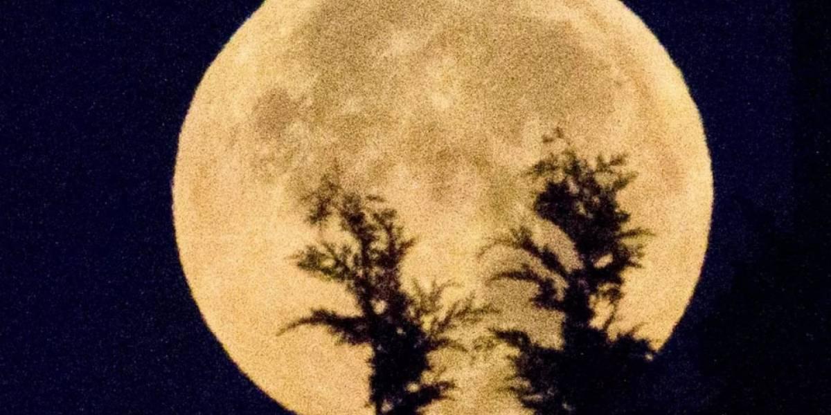 Historias de terror asociadas al eclipse lunar y la 'Luna de Sangre'