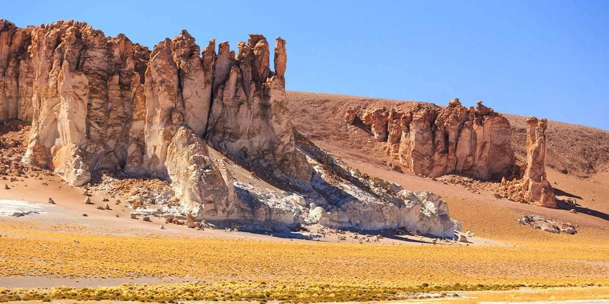 Desierto de Atacama estaría en riesgo por sobreexplotación de recursos hídricos