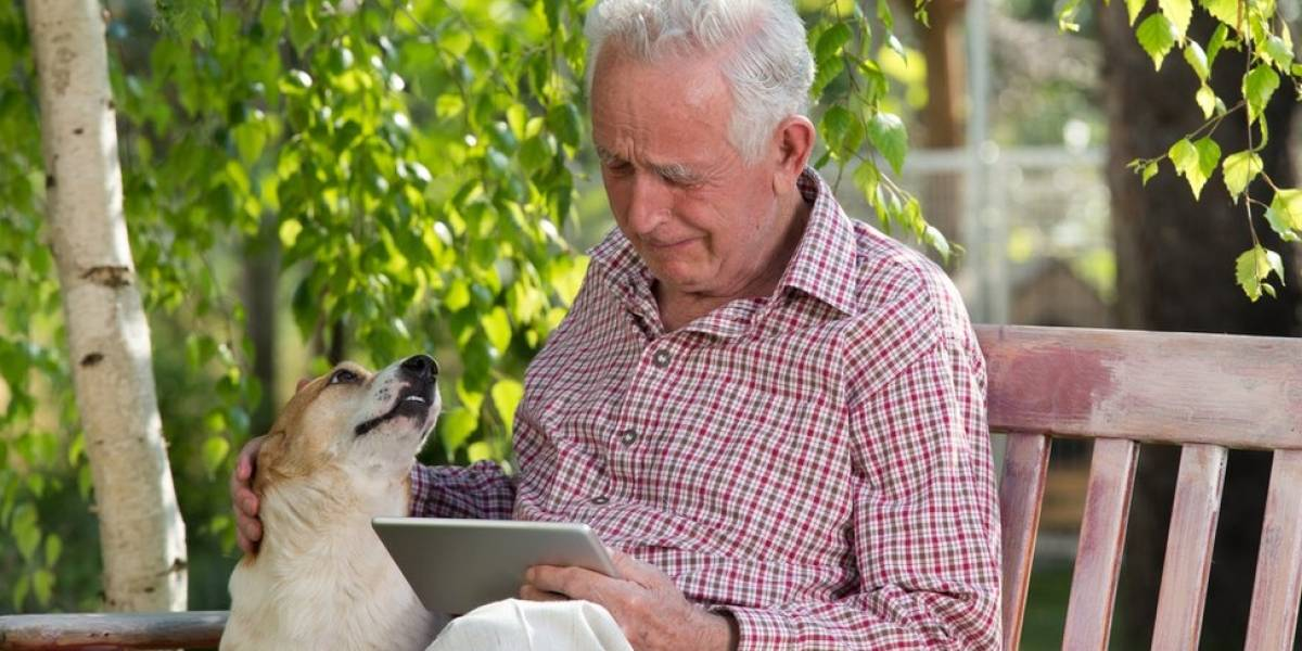 Cachorros correm para ajudar quando donos choram, indica estudo