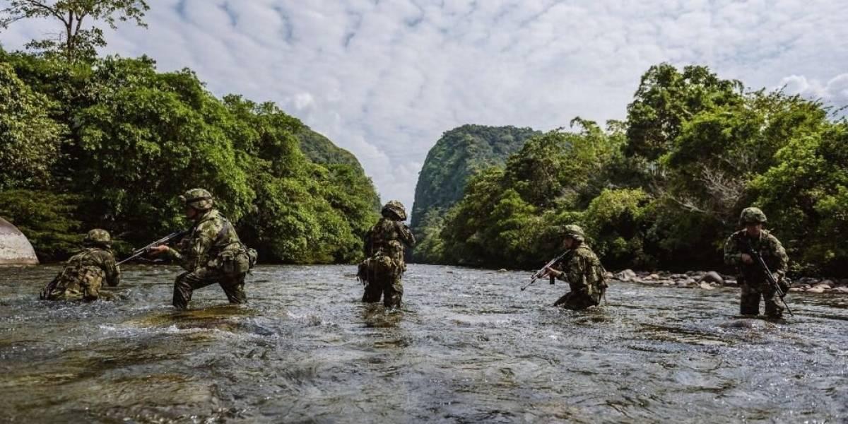 Colombia: Esta es la Fuerza de Tarea Conjunta Hércules, la cual está detrás de Guacho