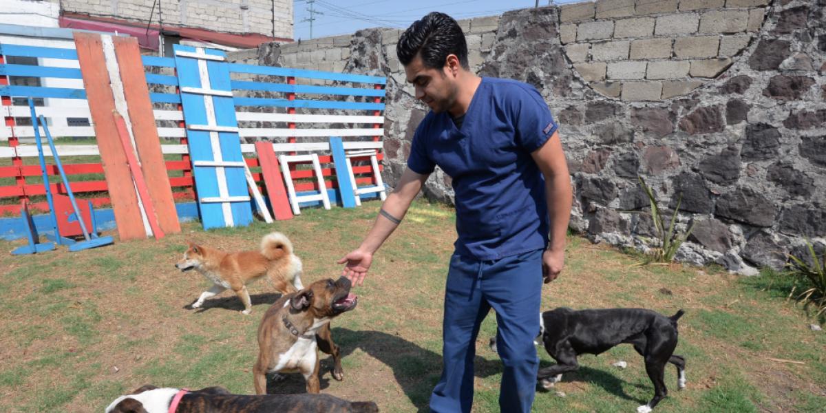 No hay que tratar a las mascotas como humanos: Moisés Heiblum