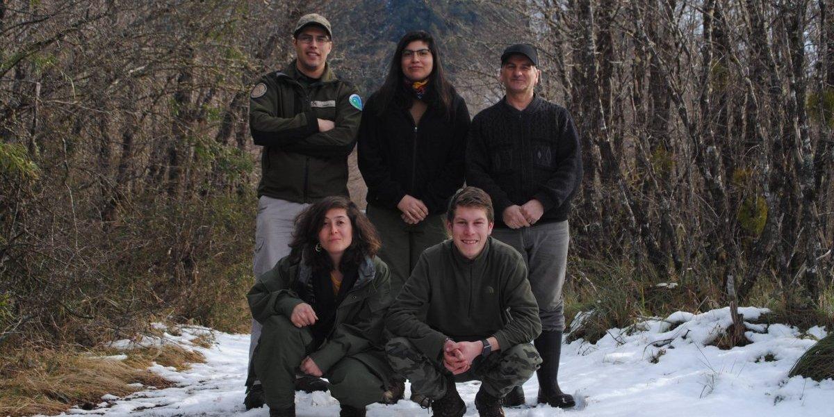 El duro pero gratificante trabajo de guardaparques: la invaluable labor de quienes protegen lo mejor de Chile en Huilo Huilo