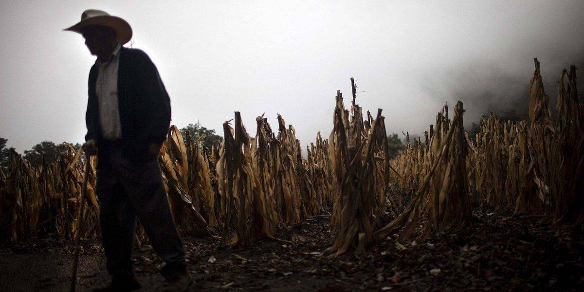 Declaran alerta anaranjada en Baja Verapaz por efectos de la canícula