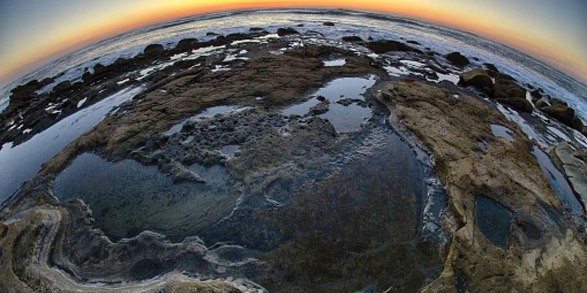 La humanidad habrá agotado el 1 de agosto los recursos naturales anuales de la Tierra