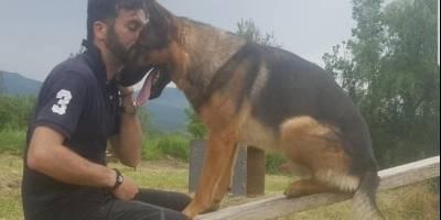Kaos, el perro héroe de Italia, murió