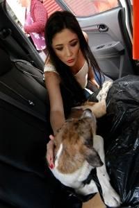 Perro maltratado fue rescatado por URRA Guayas, encabezado por Nathaly Toledo