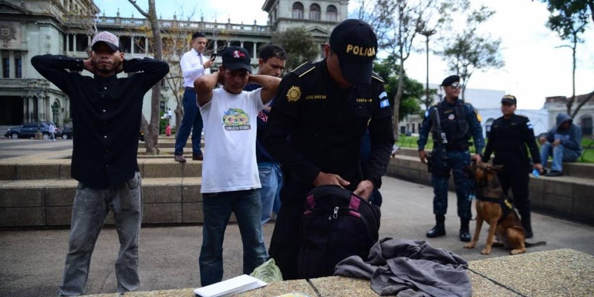 VIDEO. Con apoyo del agente Pluto, localizan droga en Plaza de la Constitución