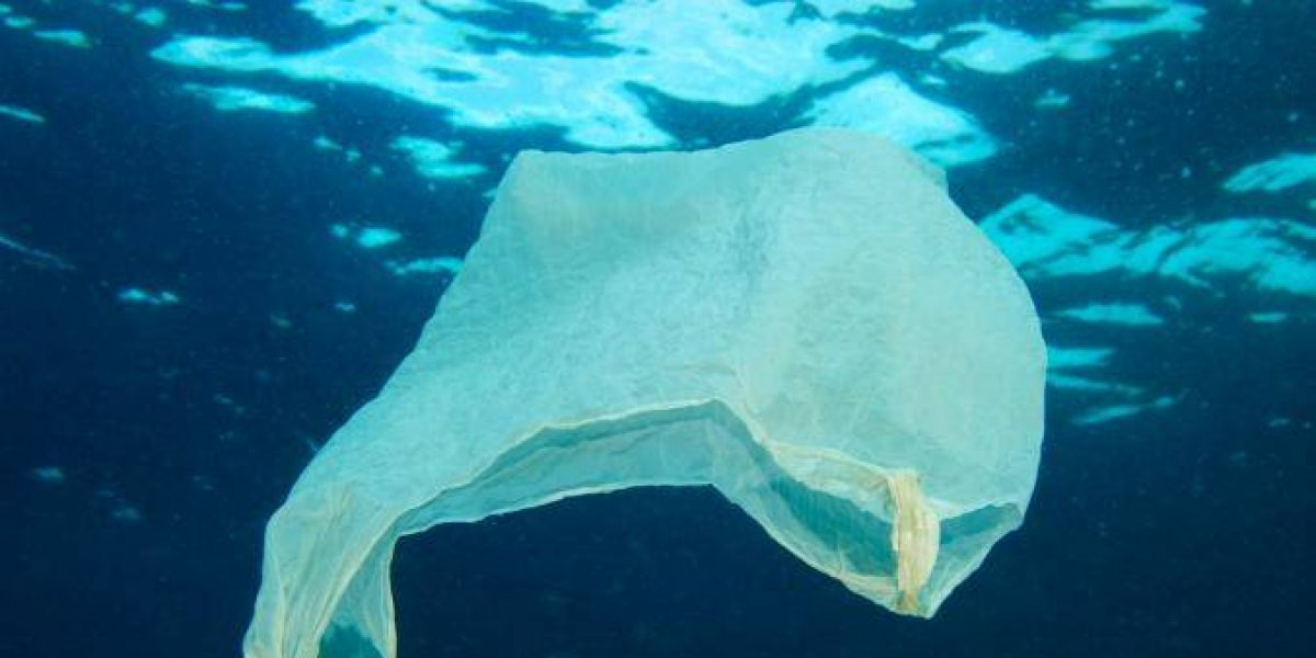 Recogen firmas para prohibir bolsas plásticas en RD