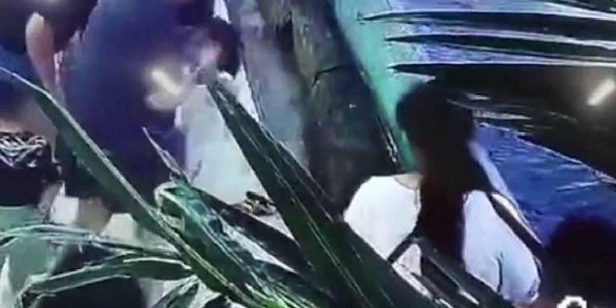 VÍDEO: Tubarão morde a mão de criança em 'aquário aberto' na China