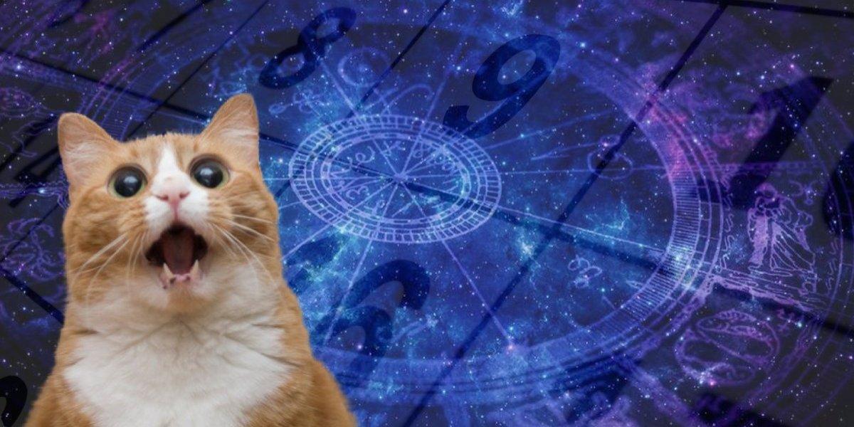 Ano do Sol: Confira o horóscopo de todos os signos do zodíaco para 2019