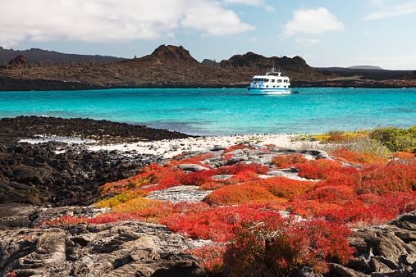 Prohíben el uso de pirotecnia con ruido en Galápagos