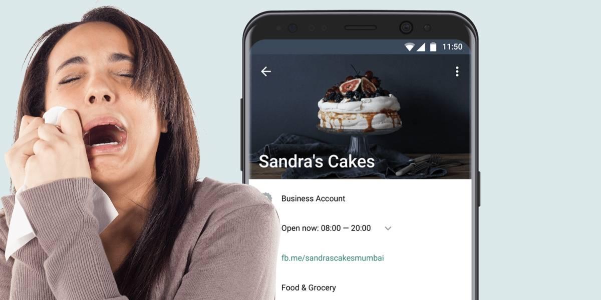 WhatsApp Business empieza a hacer dinero pero expone a usuarios en chats