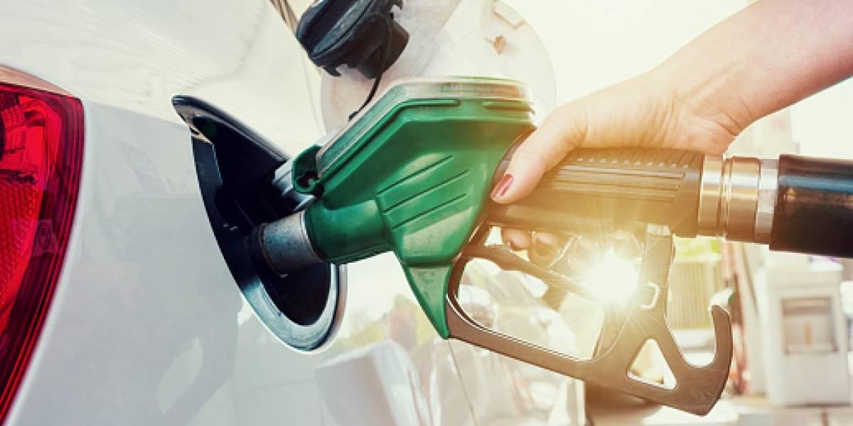 Gobierno asegura que subsidios al gas y diésel se mantendrán intactos