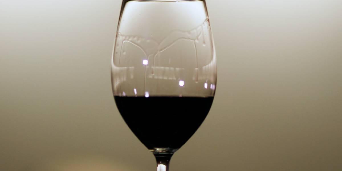 Producción de vino chileno en alza: región de Coquimbo triplicó expectativas con respecto a 2017