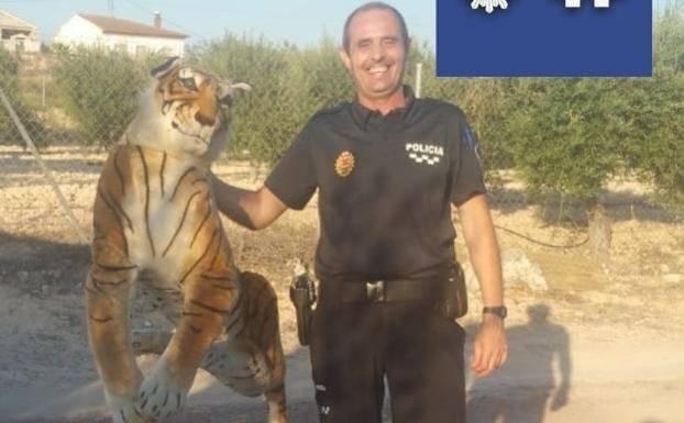 """Los agentes creen que se trata de """"una broma para generar alarma"""" ya que """"a lo lejos parecía un tigre por la posición que tenía"""
