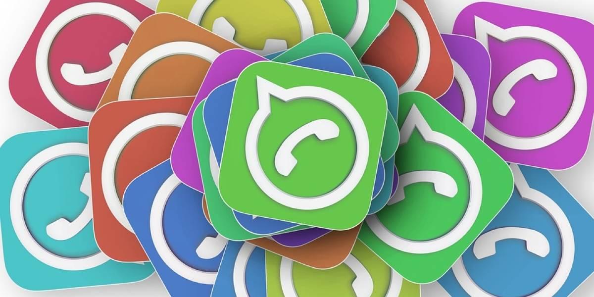 Ahora sí: Ya se dejaron ver los stickers dentro de la app de WhatsApp