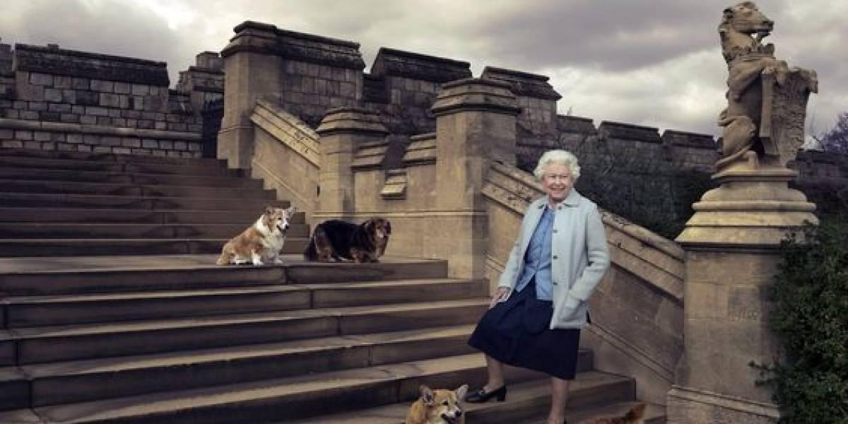 Los perros de la reina Isabel II son los anfitriones de sus invitados especiales