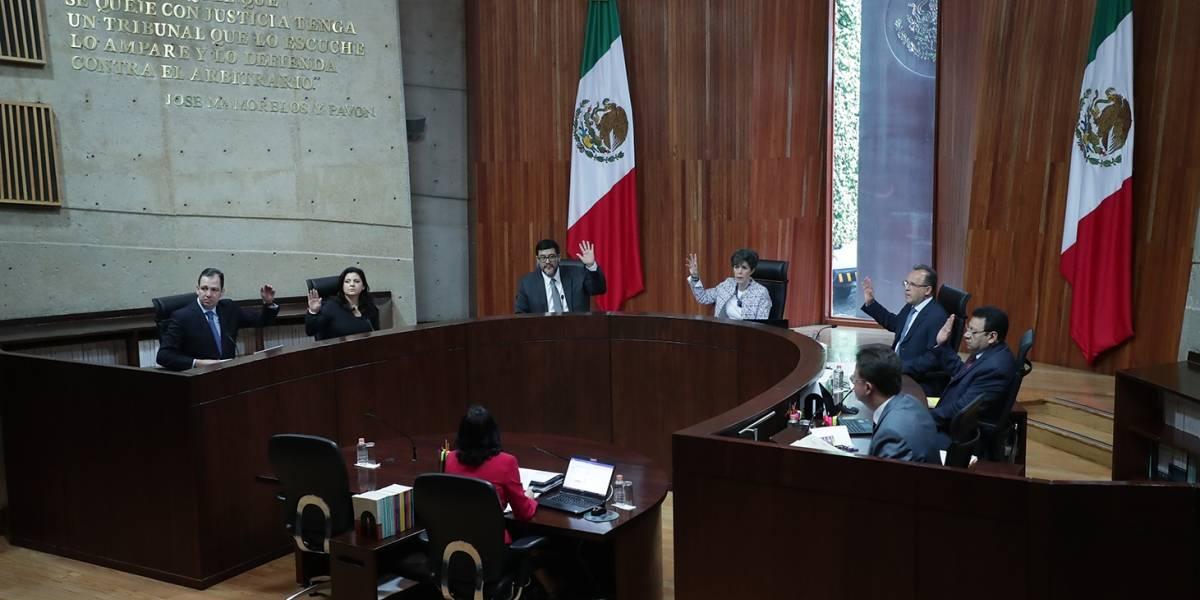 TEPJF concluye revisión de impugnaciones contra elección presidencial
