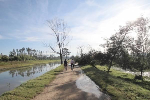 Los humedales de Bogotá entraron en la lista de importancia internacional Ramsar