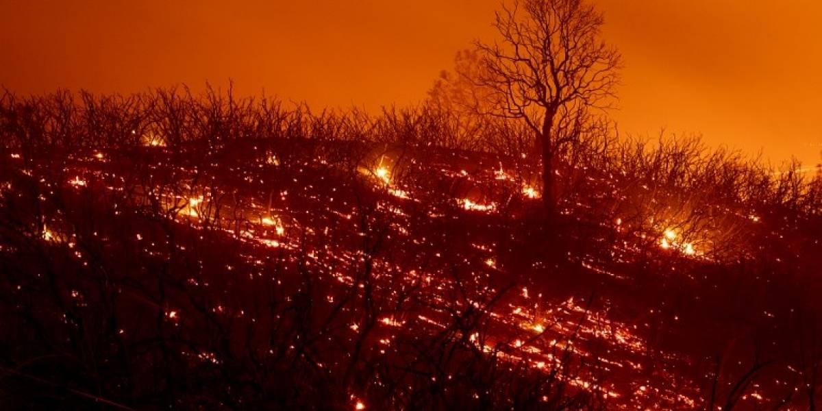 FOTOS. Los incendios en California, un infierno sin control