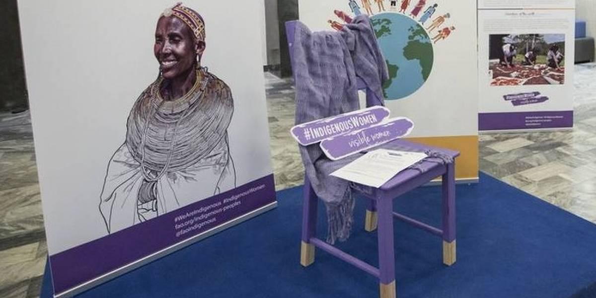 """FAO lanza campaña """"Silla Violeta"""" para dar voz a mujeres indígenas"""