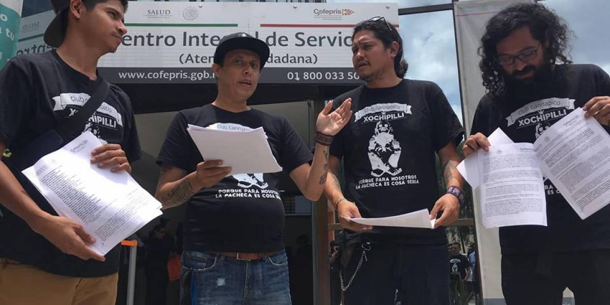 Club cannábico busca legalizar autocultivo de uso lúdico