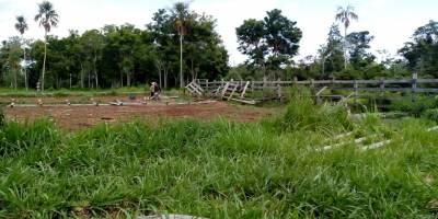 áreas recuperadas en el Parque Nacional Laguna del Tigre