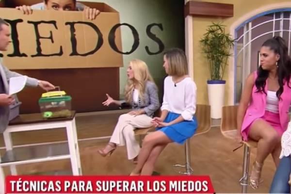 Francisca Lachapel sufre ataque de pánico en vivo