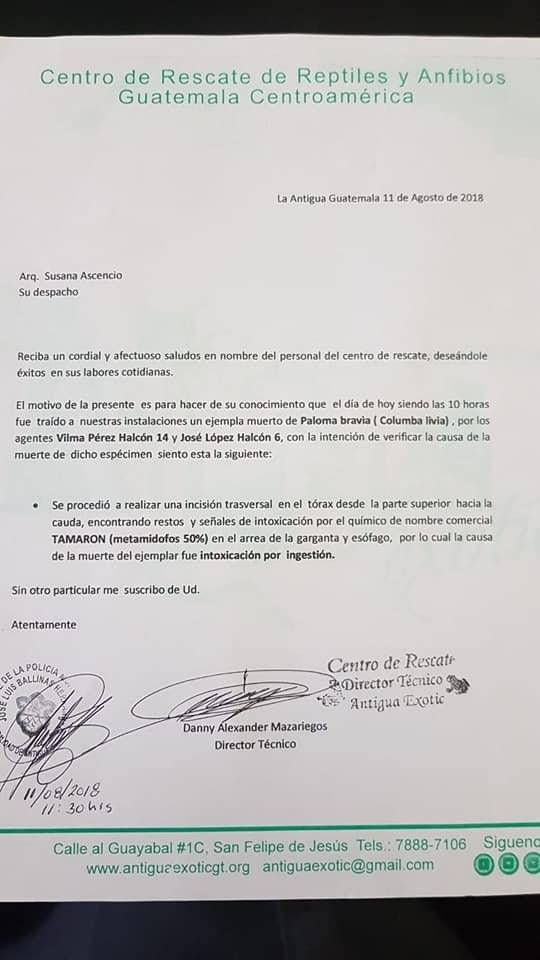 Foto: Municipalidad de Antigua Guatemala