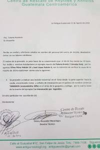 Palomas son intoxicadas en Antigua Guatemala