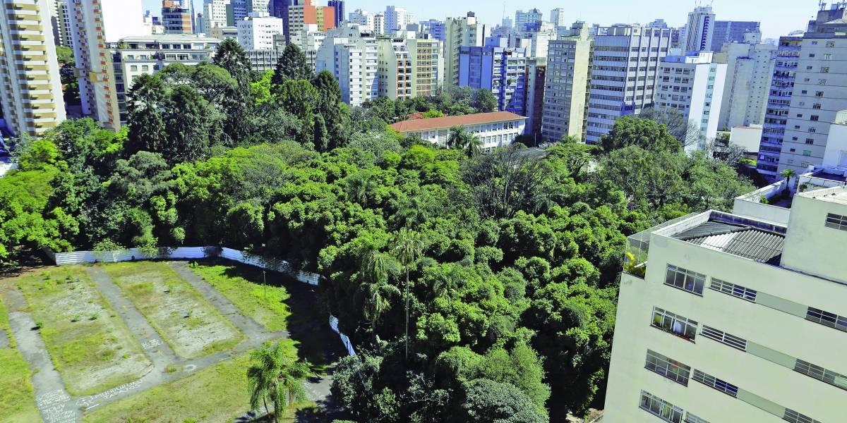 Instituto pede pausa na construção do parque Augusta por 'grande potencial arqueológico'