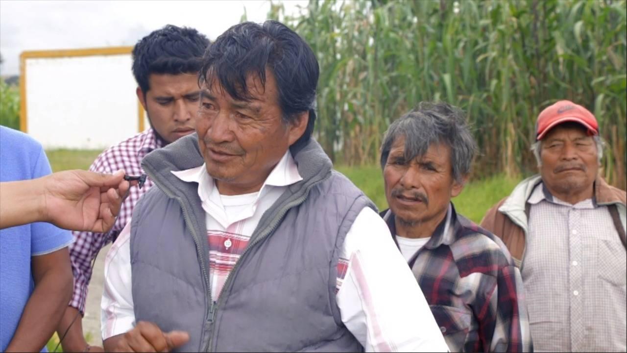 Los campesinos acusan a Volkswagen