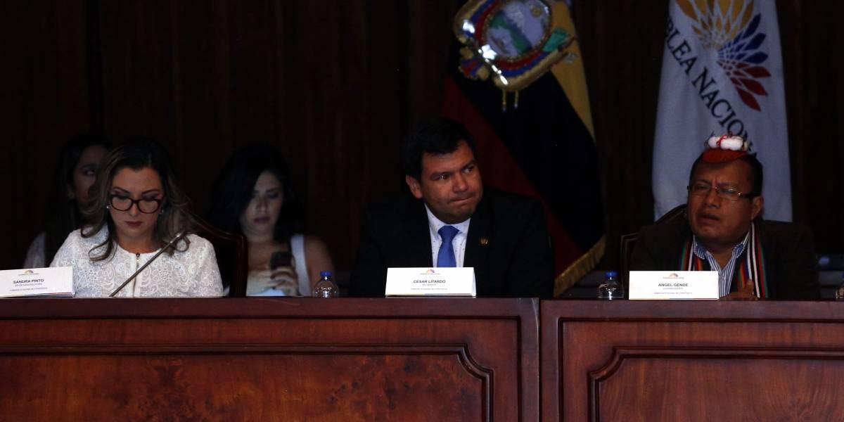 El perito Roberto Meza comparece ante la Comisión Ocasional que investiga el Caso Gabela