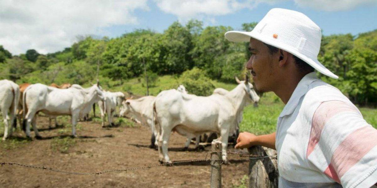 Mensaje de Costa Rica: Para salvar a México, hay que salvar al agro