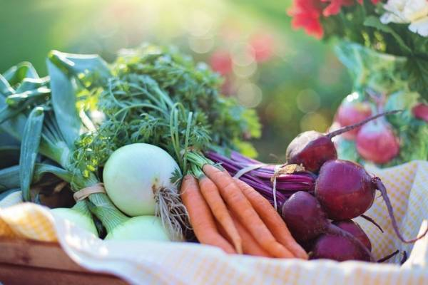 Equilibrio nutricional de la dieta diaria para diabeticos