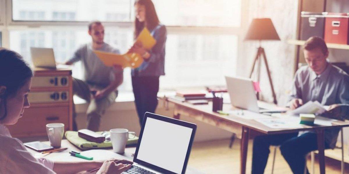 Empleo temporal: la forma de obtener experiencia para futuros trabajos